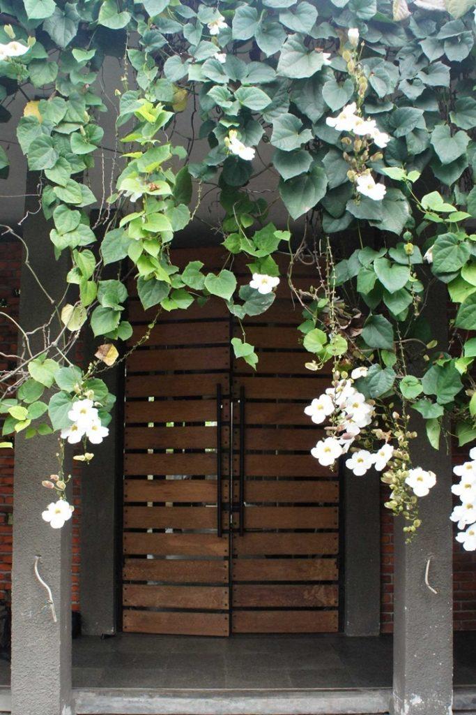 Pintu Masuk Tropical Pintu Rumah minimalis